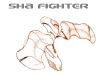 SHA Fighter 1