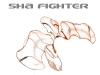 SHA Fighter 1